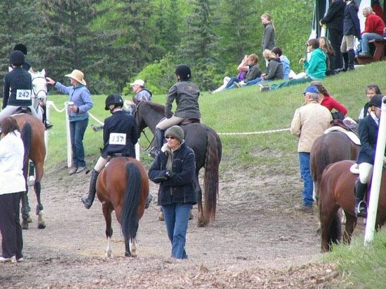 Whitemud Equine Learning Centre Association : People watch from berms by the Hunter Ring and Keillor Rd Trail