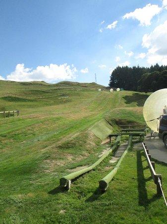 OGO Rotorua : Did both the straight path and zigzag.