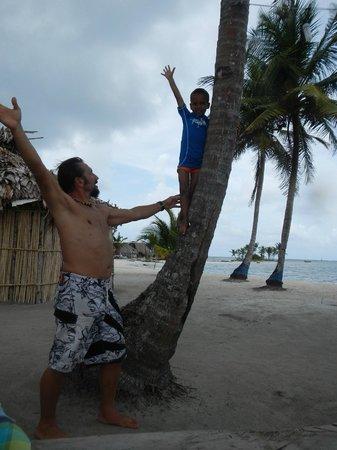 Monkey Lodge Panama : Fabrice en action!