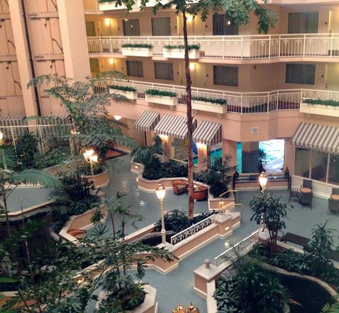Embassy Suites by Hilton Hotel San Rafael - Marin County / Conference Center : view toward indoor pool area