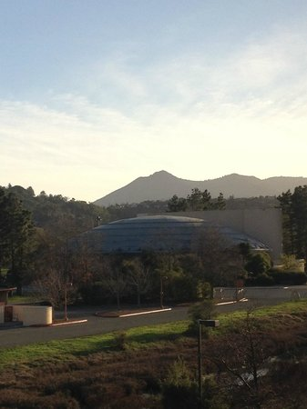 Embassy Suites by Hilton Hotel San Rafael - Marin County / Conference Center : Mt. Tam beyond Marin Center
