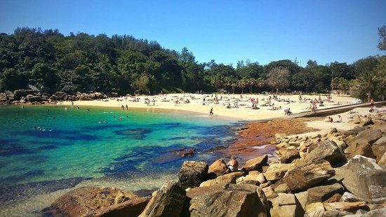 Manly, Avustralya: Summer at Shelly Beach