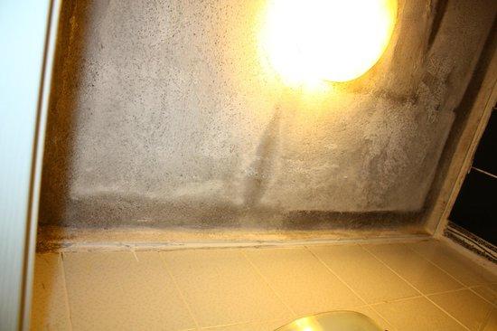 Adeka Hotel : ceiling full of mould