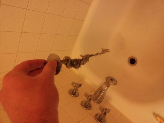 La Quinta Inn Waco University: Hair in Drain clogged shower from previous guest
