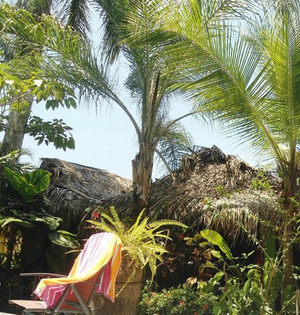 La Posada Private Jungle Bungalows: View of bungalow's from pool