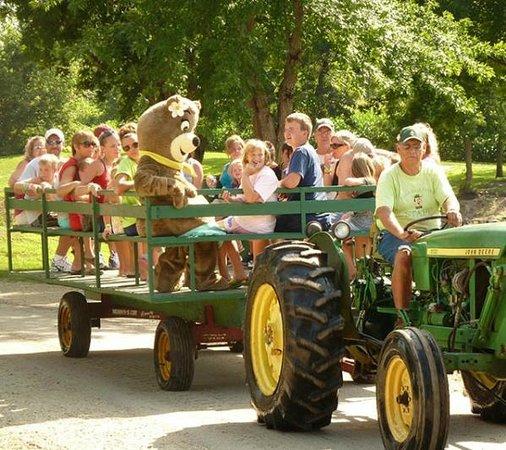 Yogi Bear's Jellystone Park Camp-Resort at Beaver Trails: Tractor Rides with Yogi Bear™ and BooBoo™