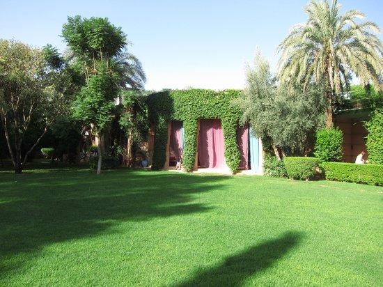 Dar Zemora: garden
