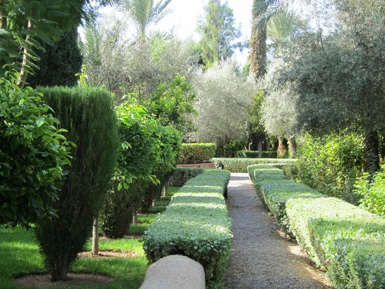 Dar Zemora: gardens