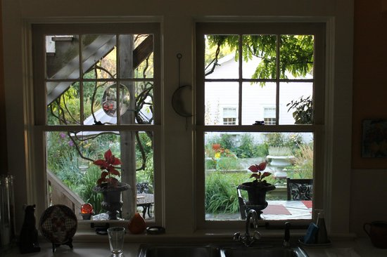 The Guesthouse: Kitchen window