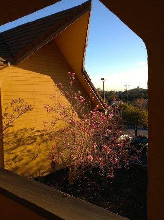 Best Western Plus Novato Oaks Inn : sunrise glow on one side of Inn