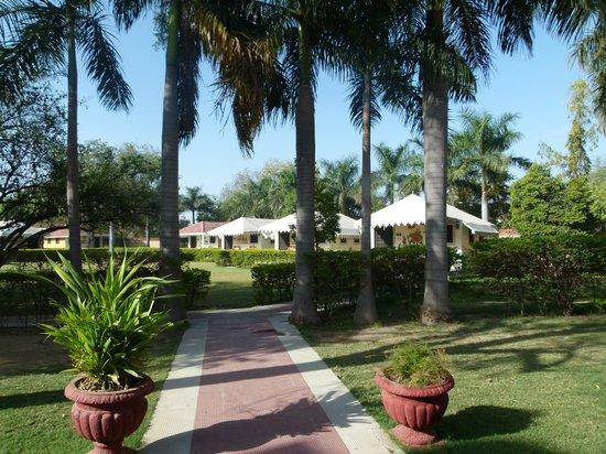 juSTa Rajputana, Udaipur Resort: bungalows