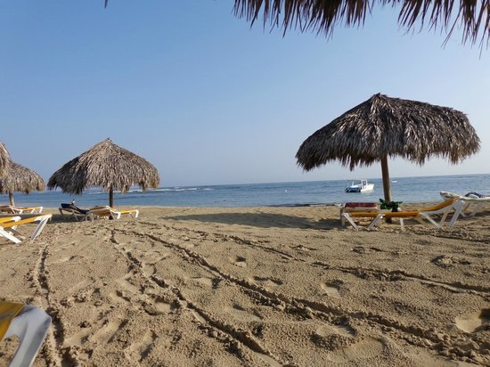 Iberostar Costa Dorada : Beach