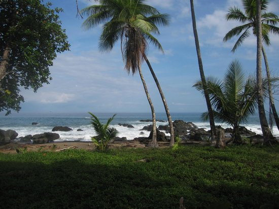 Copa de Arbol Beach and Rainforest Resort: Pacific Ocean