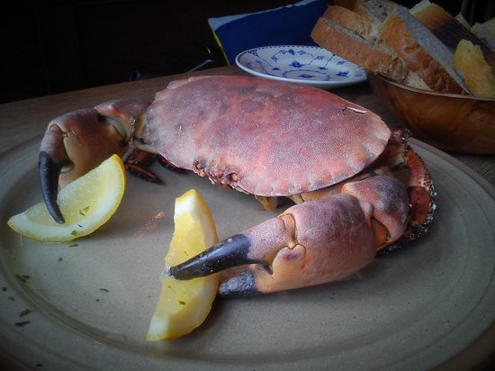 The Rum and Crab Shack: A Fine Crab