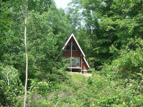 Serenity Springs : Hidden Gem