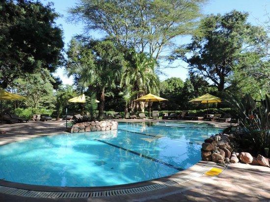 Sarova Mara Game Camp: Pool