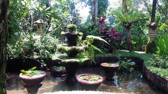 Bali Eco Resort and Adventure: First impression of Bali Eco