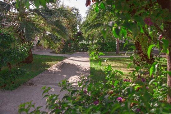 Villaggio Torre Ruffa Robinson: Giardini