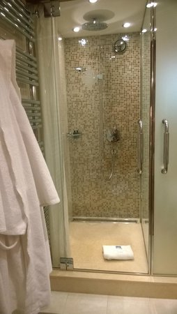 Hotel Le Grand Coeur & Spa: Shower