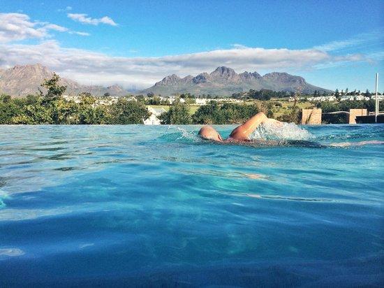 De Zalze Lodge: The infinity pool at The Kleine Zalze lodge