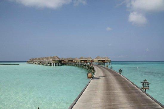 Constance Halaveli: Jetty to the water villas
