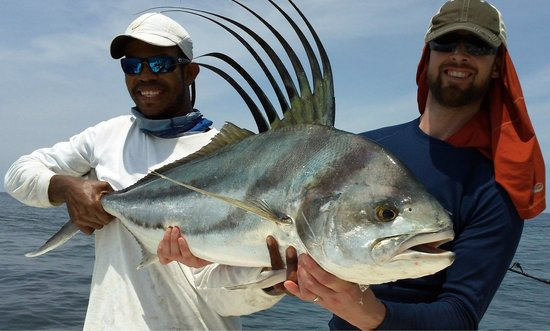 Sport Fish Panama Island Lodge: Roosterfish