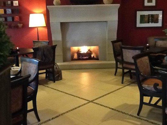 Lansdowne Resort and Spa: Lareira