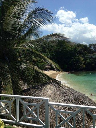 Grand Palladium Jamaica Resort & Spa: Coral Beach view from adult pool
