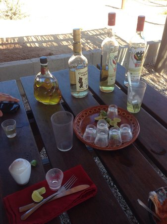 Cabo Adventures: tequila tasting