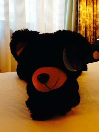Hotel Monaco Portland - A Kimpton Hotel: The resident room bear available for purchase.