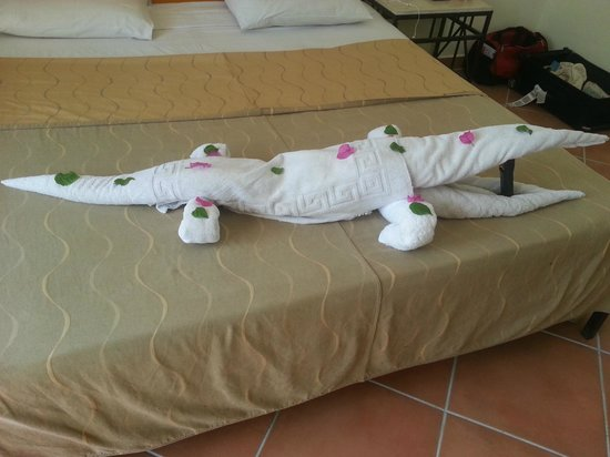 Luna Sharm Hotel: Towel art