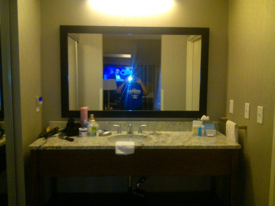 Hampton Inn & Suites Chapel Hill/Carrboro: Vanity