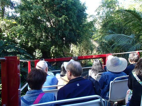 San Diego Zoo : The Bus Tour