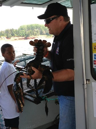 Top Notch Charters - Lobster Excursions: Big Lobster