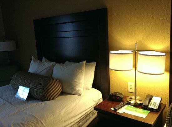 La Quinta Inn & Suites Dickinson: Other Bed