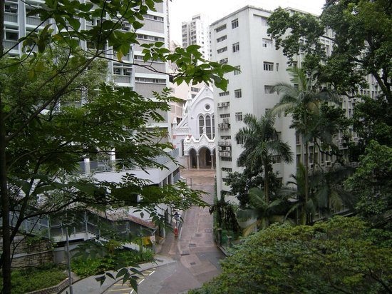 Hong Kong Zoological and Botanical Gardens: вид на католических храм с территрии парка