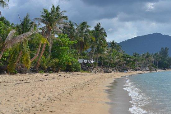 Save House: ближайший к отелю пляж