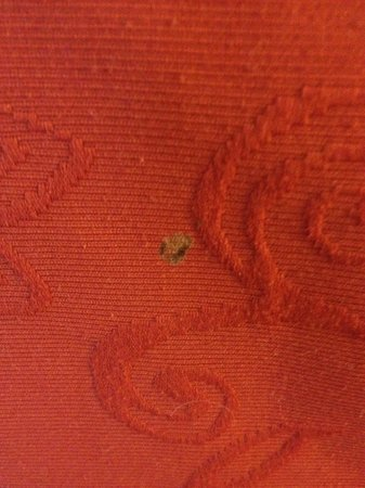 Country Inn & Suites By Carlson, Kalamazoo: Stained duvet