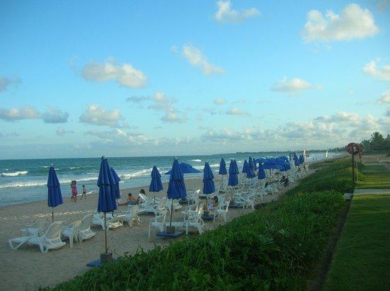 Village Porto de Galinhas: Parte da praia