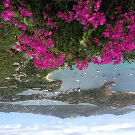 Shirley Heights: Lovely Antigua