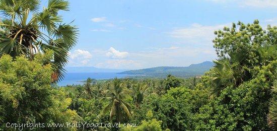 Villa Flow: Incredible views!