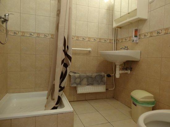 Central Green Hotel : Worn Bathroom