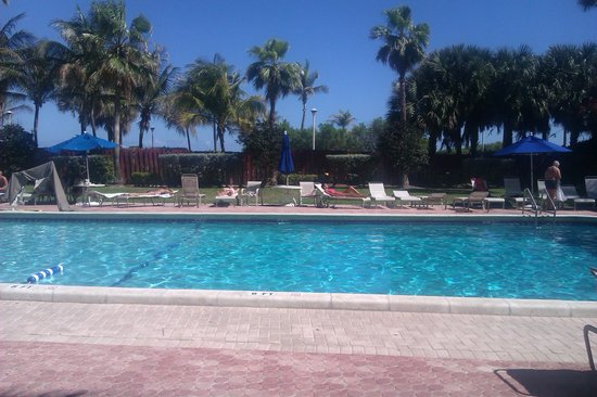 Seagull Hotel Miami South Beach: beautiful pool