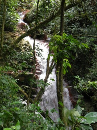 Costa Rica Unique Transfers & Tours: Waterfall/river in the rain-forest (Miravalles)