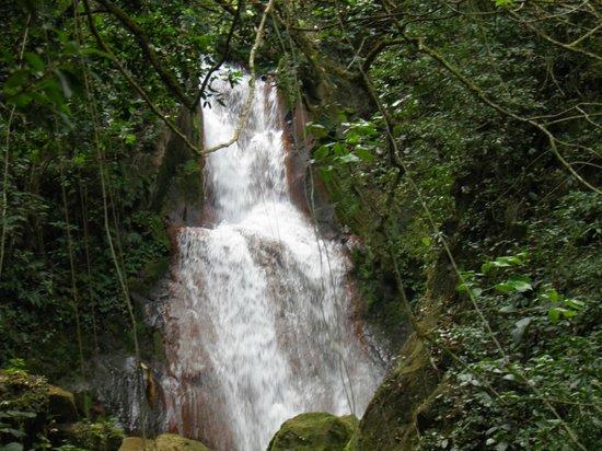Costa Rica Unique Transfers & Tours: Miravalles
