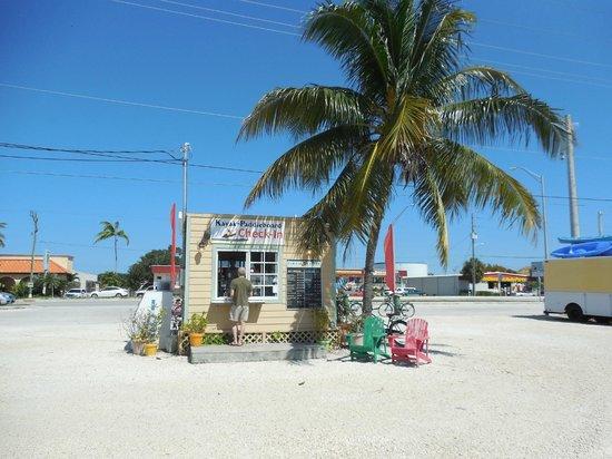Curly's Coffee Company: Charming coffee stand.
