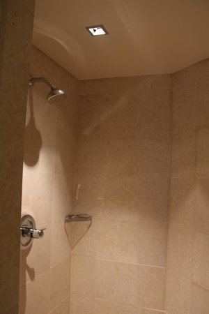 Four Seasons Hotel Sydney: Spacious walk-in shower