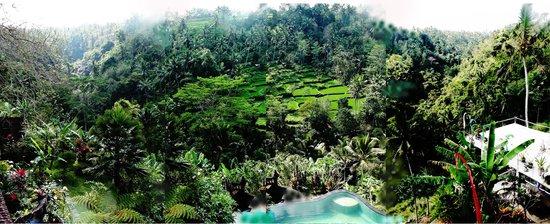 Tirta Asri Ubud: View