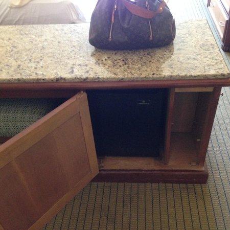 Coronado Island Marriott Resort & Spa : 385 - Refrigerator and Carpet stains!