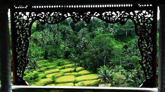 Tirta Asri Ubud: front view